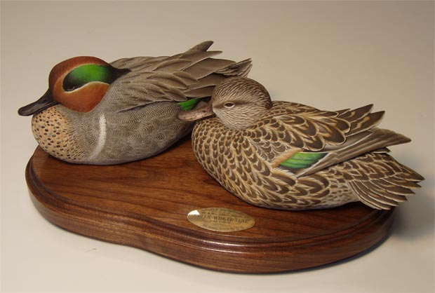 green-wing teal pair