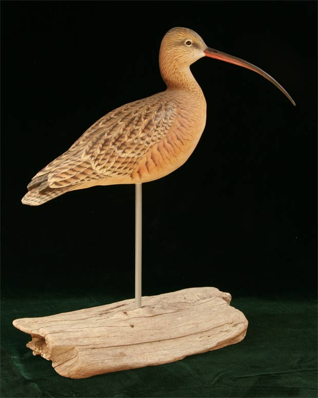 Decorative Long-Billed Curlew